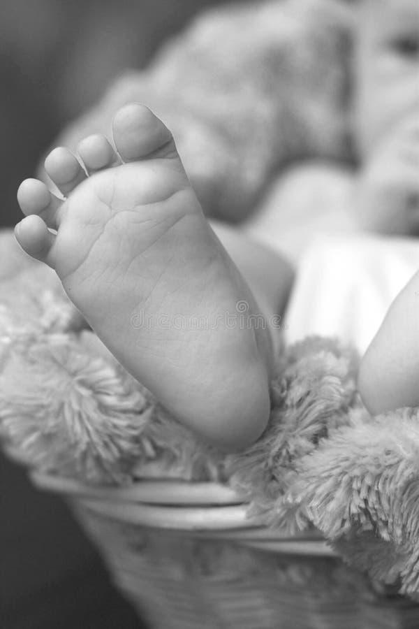 stopy dziecka zdjęcia stock