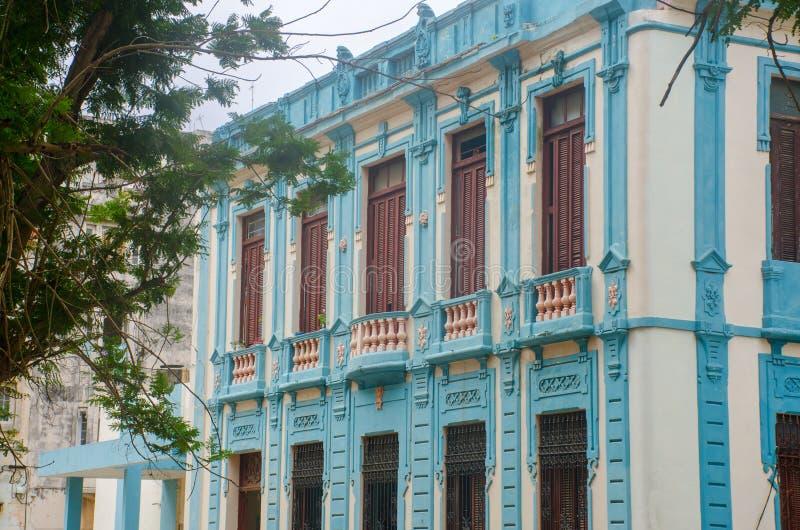 Stor blå byggnadshavannacigarr med trädet arkivbilder