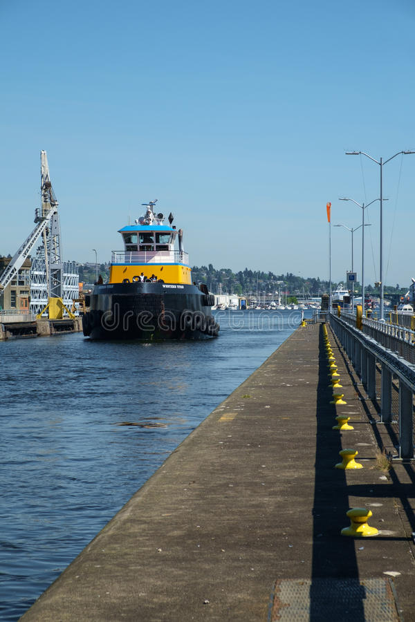 Stor blått- och gulingbogserbåt på Ballard Locks, Seattle royaltyfria bilder