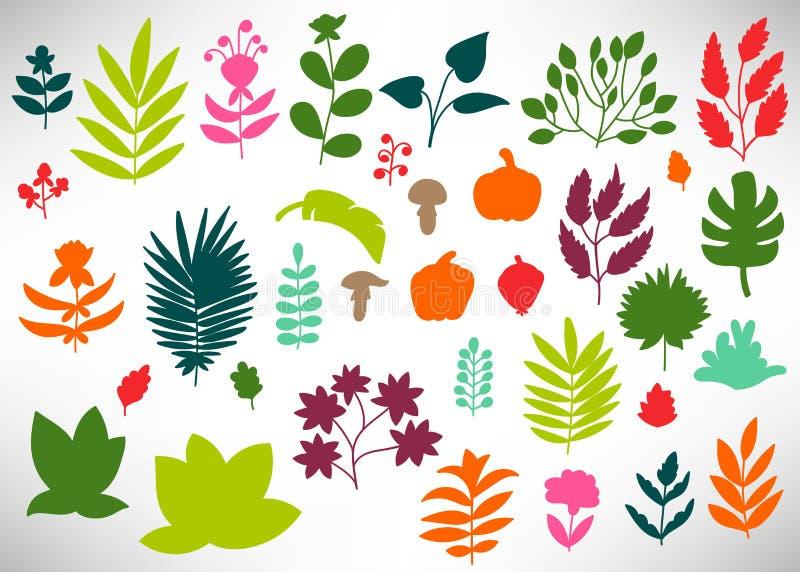 Stor blom- uppsättning av utdragna blommor för färgrik hand, buskar, sidor, filialer, pumpa, champinjoner som isoleras på vit stock illustrationer
