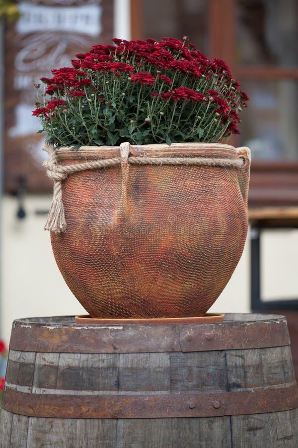 Stor blomkruka med burgundy krysantemum Sale av blommor royaltyfria bilder