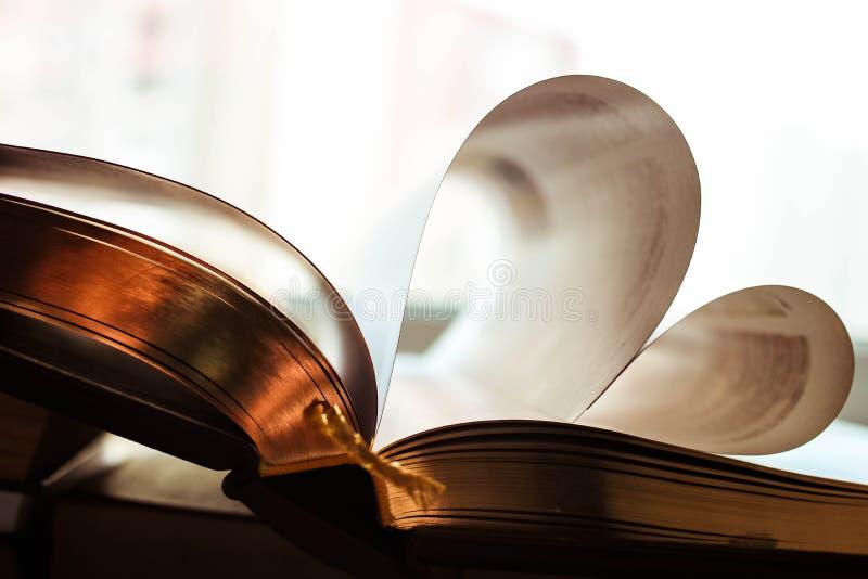Stor bok med guld- sidor i bilden av hjärtan Skinande witebakgrund royaltyfri fotografi
