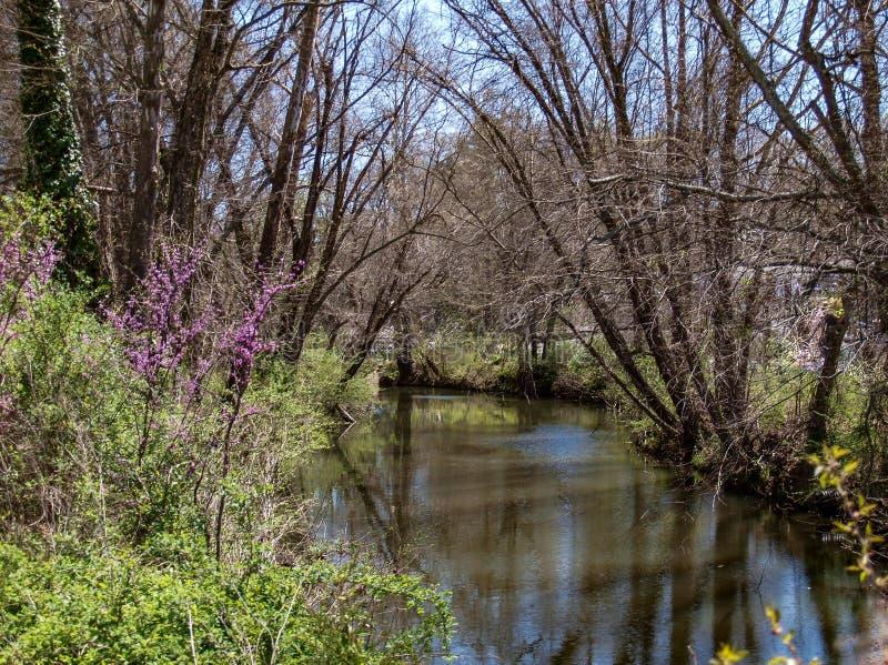 Stor Elkin liten vik längs Elkin & den Alleghany slingan arkivfoto