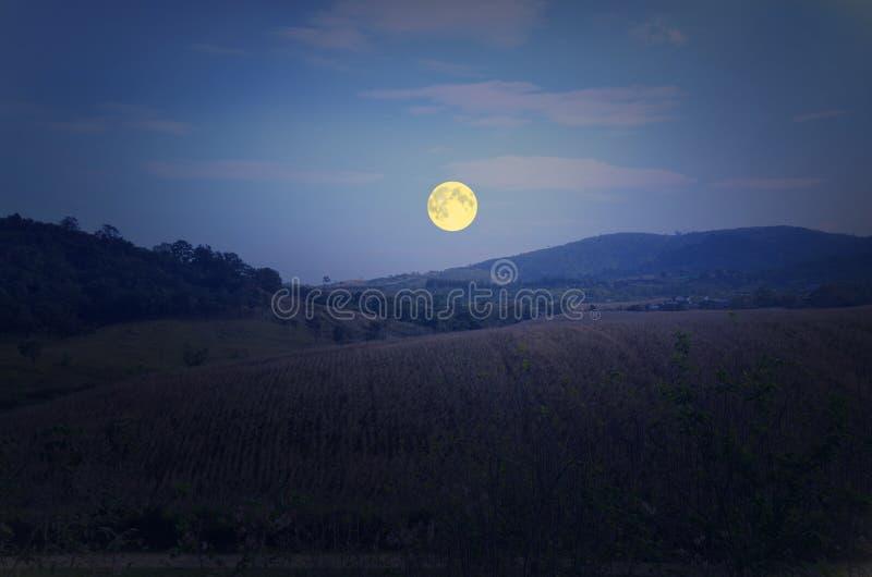Stor fullmåne över berget royaltyfri foto