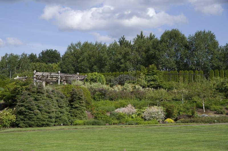 Stor gräsmattafantasiträdgård royaltyfri bild