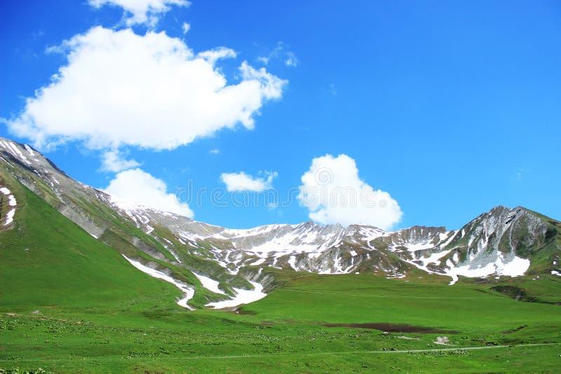 Stor grön gräsmatta och står lite varstans höga berg i snö och härlig himmel på en sommardag georgia arkivbild