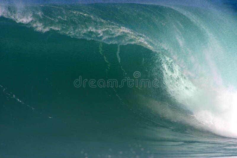 stor hawaii wave royaltyfri foto
