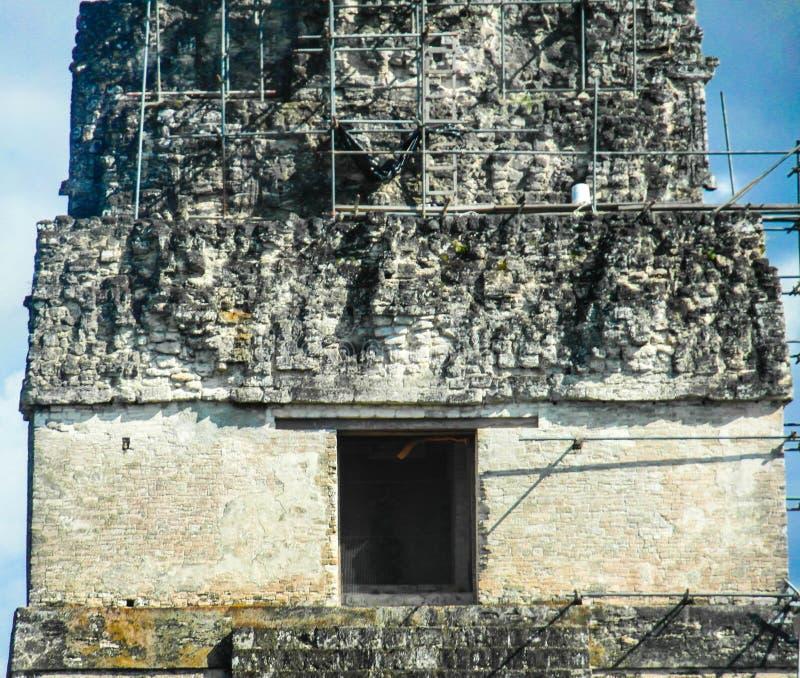 Stor Jaguar tempel Tikal Guatemala arkivbilder