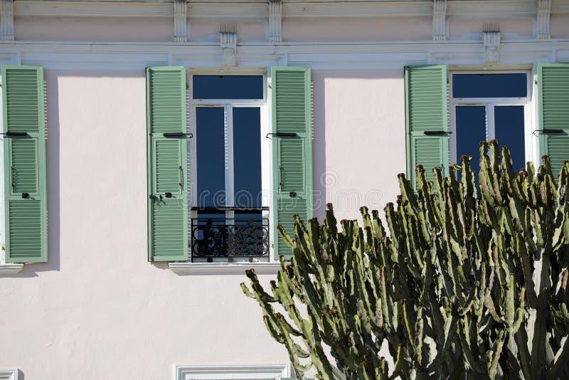 Stor kaktus framme av ett hus royaltyfri fotografi
