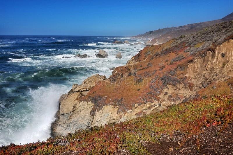 stor Kalifornien sur arkivbild
