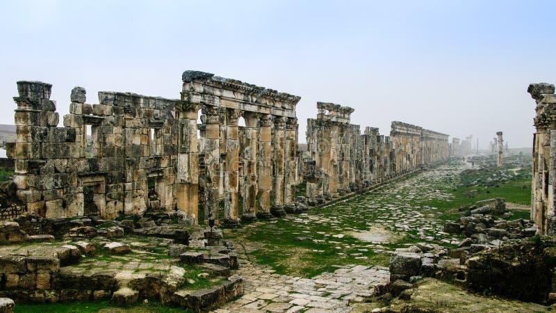 Stor kolonnad Apamea i dimma som förstörs delvist av ISIS Syria arkivfoton
