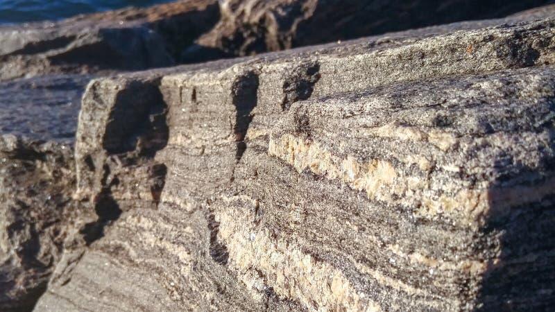 Stor mer djärv av sedimentär sten vid vattnet arkivbilder