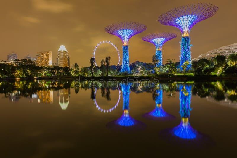 Stor nattetid för trädljusshow Singapore arkivbild
