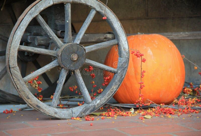 Stor orange pumpauppsättning på golv, nära vagnhjulet royaltyfri fotografi