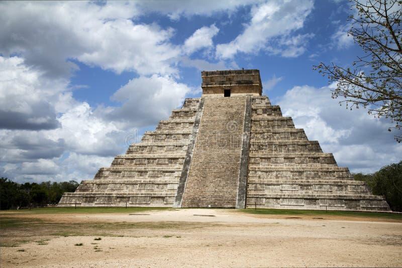 Stor pyramid i Mayan stad royaltyfri fotografi
