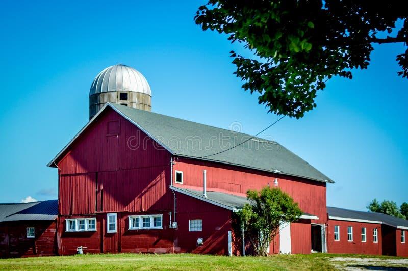 Stor röd ladugård med den vita Windows och silon royaltyfria bilder