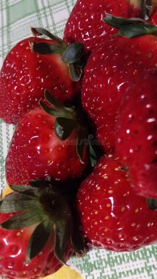 Stor, röd ny jordgubbe royaltyfri fotografi