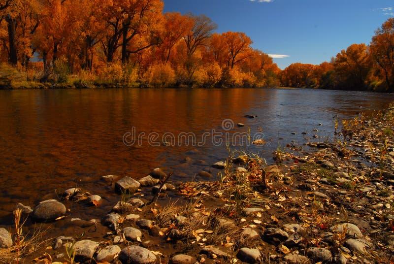 stor rio flod royaltyfria bilder
