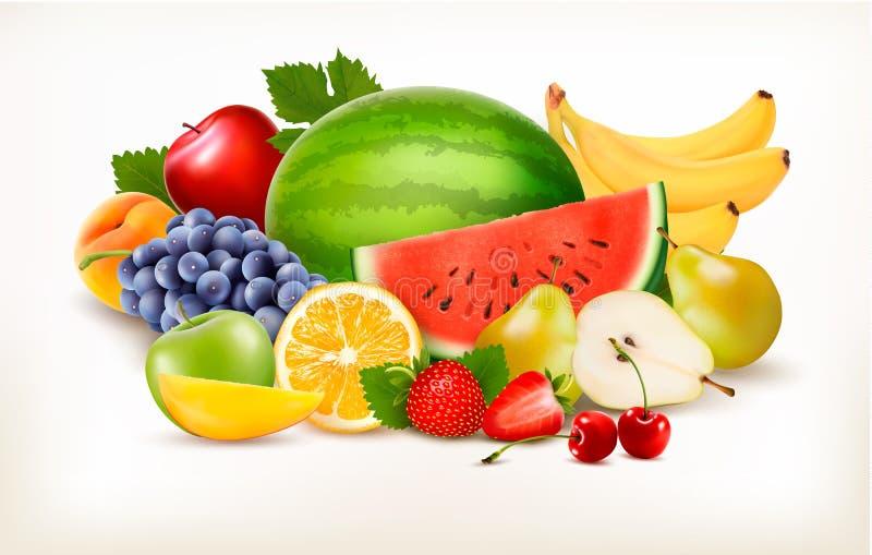 Stor samling av olik ny frukt stock illustrationer