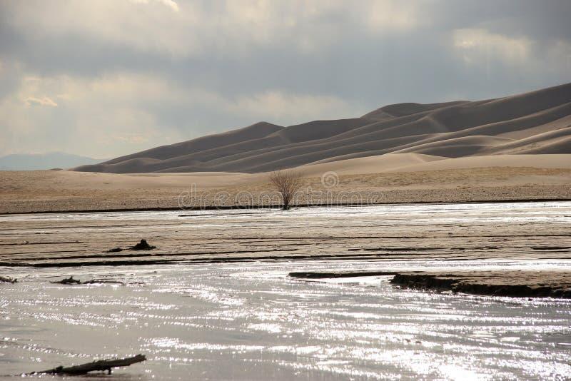 stor sand för dyner royaltyfri fotografi
