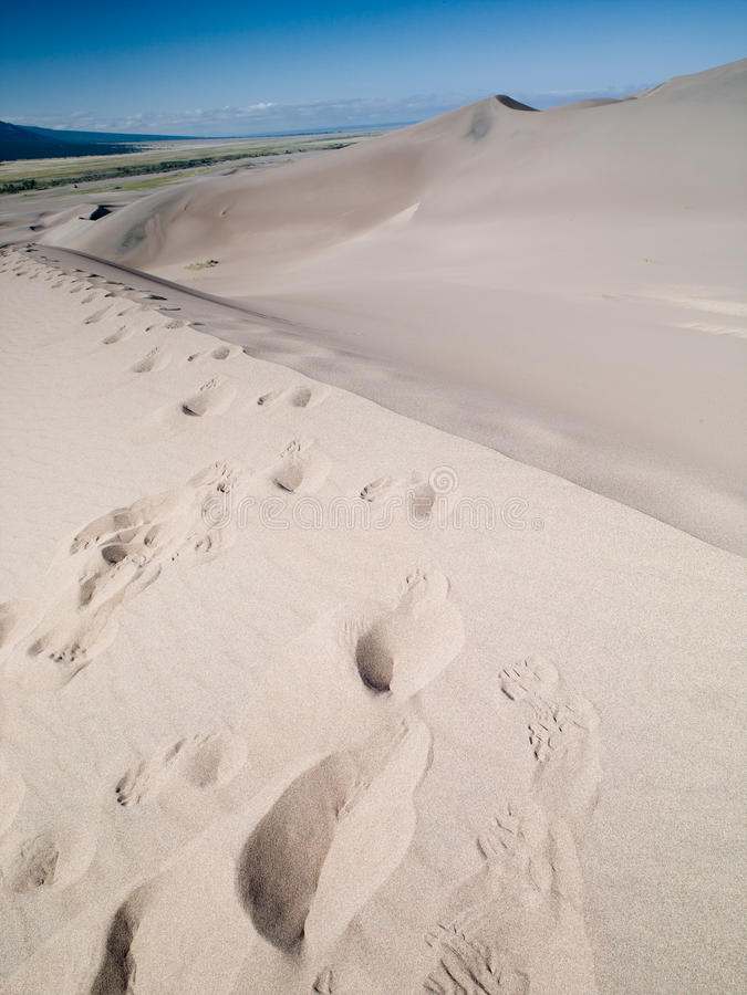 Stor sanddyn  arkivbilder