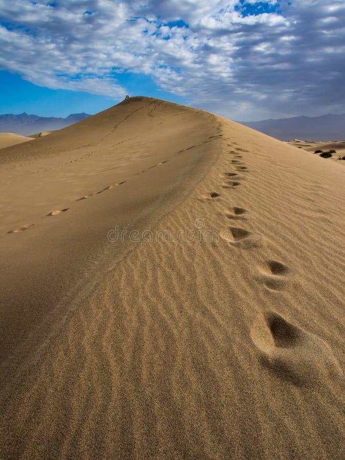 Stor sanddyn med fotspår royaltyfri foto