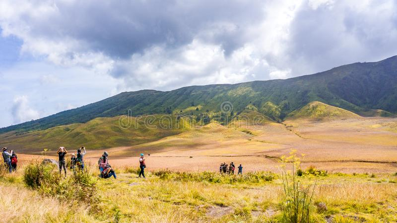 Stor savannbergBromo sommar arkivfoton