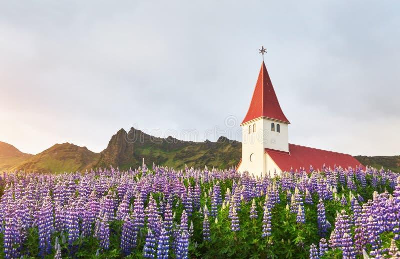 Stor sikt av Vikurkirkja den kristna kyrkan i aftonljus Dramatisk och pittoresk plats Populär turist- dragning royaltyfri bild