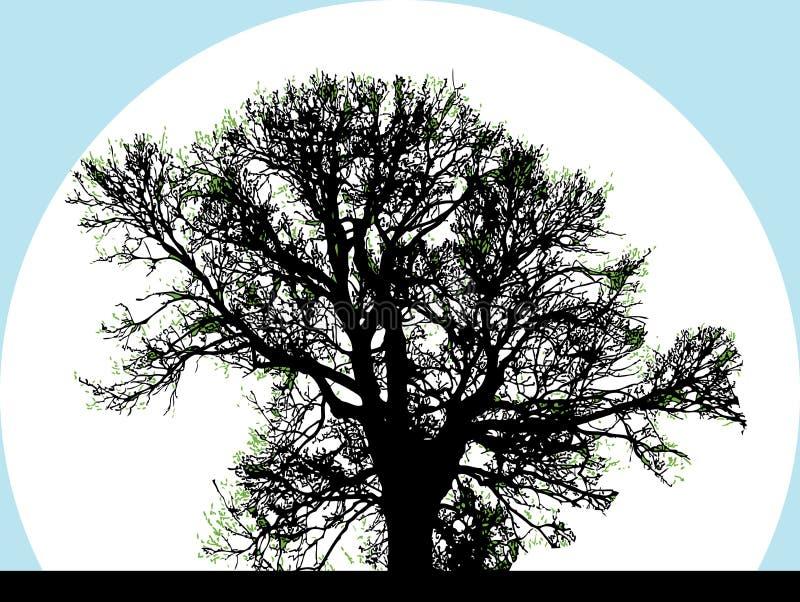stor silhouettetree stock illustrationer