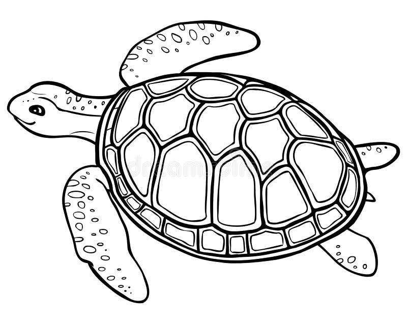 Stor sköldpadda - konturteckning som färgar sidan royaltyfri illustrationer