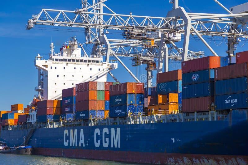Stor skyttel för CMA CGM-behållare som är olastad i port av Rotterdam fotografering för bildbyråer