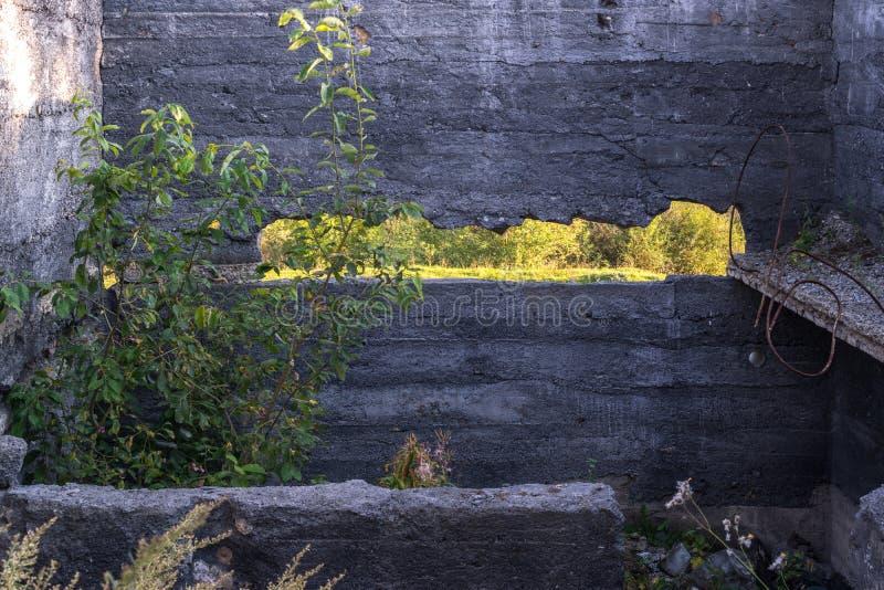 Stor spricka i gammal vägg arkivbilder