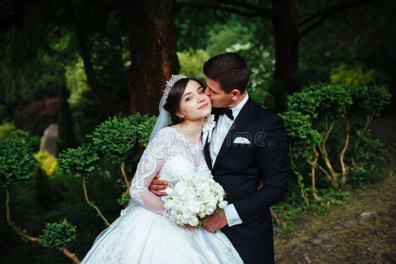 Stor stående av ett mycket härligt brölloppar royaltyfri foto