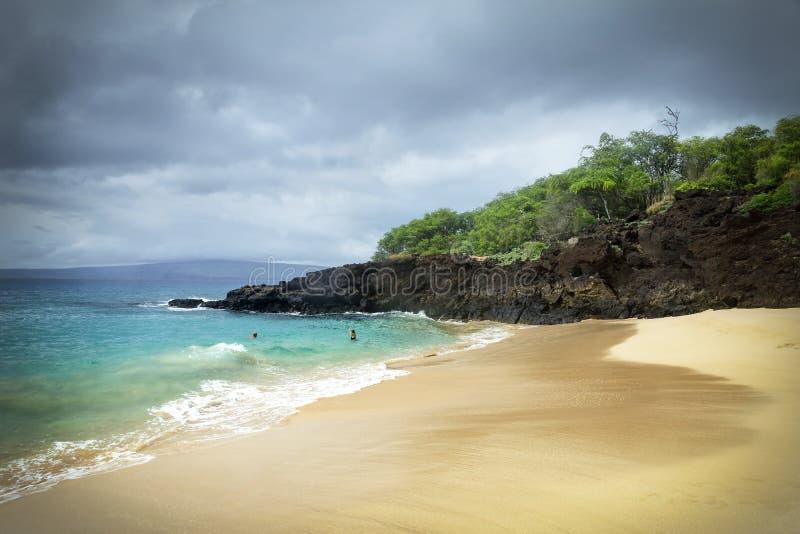 Stor strand - Maui arkivbild