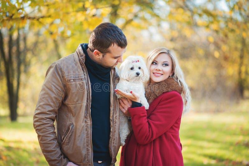 Stor tid för går! Härliga familjpar med den vita gulliga maltesiska hunden som spenderar tid i höst, parkerar royaltyfria foton