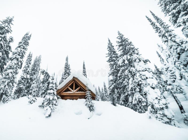 Stor träkoja i en snöig skog i dimmigt väder arkivfoto