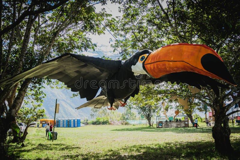 Stor tukan i Oxapampa arkivfoto