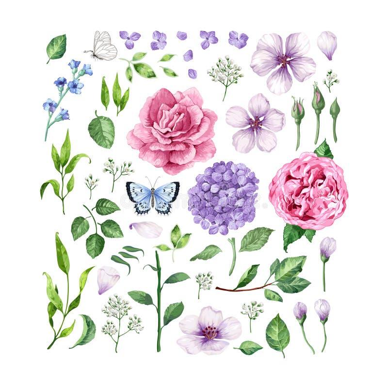 Stor uppsättning av blommarosor, vanlig hortensia, blommor för äppleträd, sidor, kronblad och fjärilar som isoleras på vit bakgru stock illustrationer