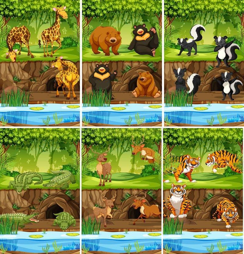 Stor uppsättning av djur i djungel stock illustrationer