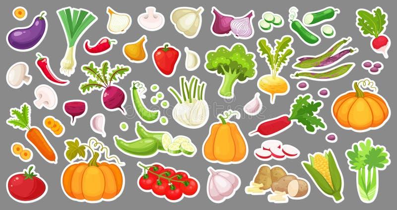 Stor uppsättning av färgrika grönsaker Isolerade klistermärkear av grönsaker Naturliga nya organiska grönsaker Tecknad filmstilve royaltyfri illustrationer