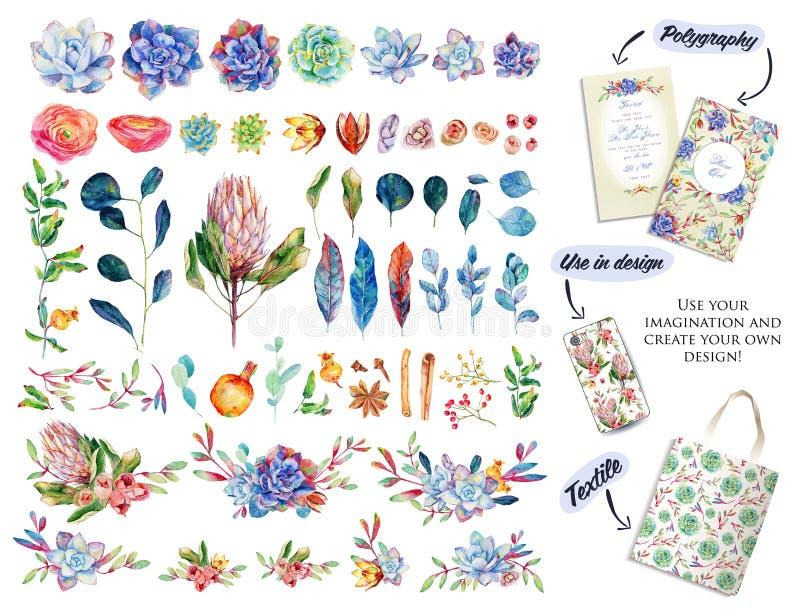 Stor uppsättning med vattenfärgblommor, sidor och blom- beståndsdelar stock illustrationer