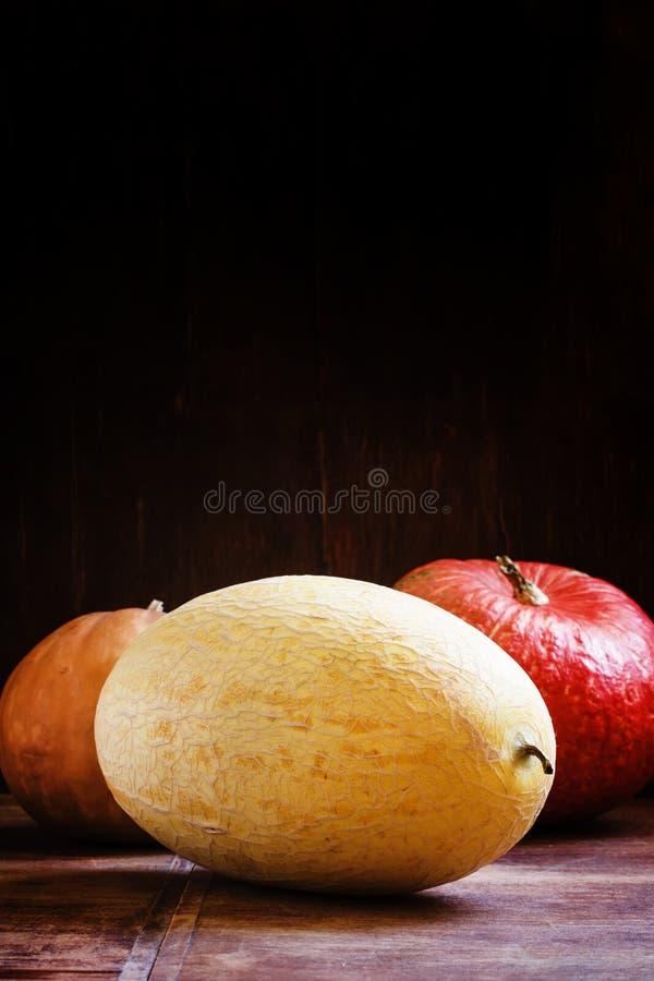Stor uzbekisk melon och pumpa, tappningträbakgrund som är vald royaltyfri foto