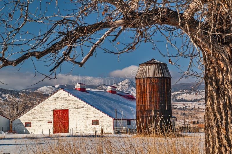 Stor vit ladugård med silon royaltyfri fotografi