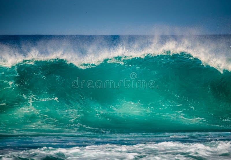 stor wave arkivbild