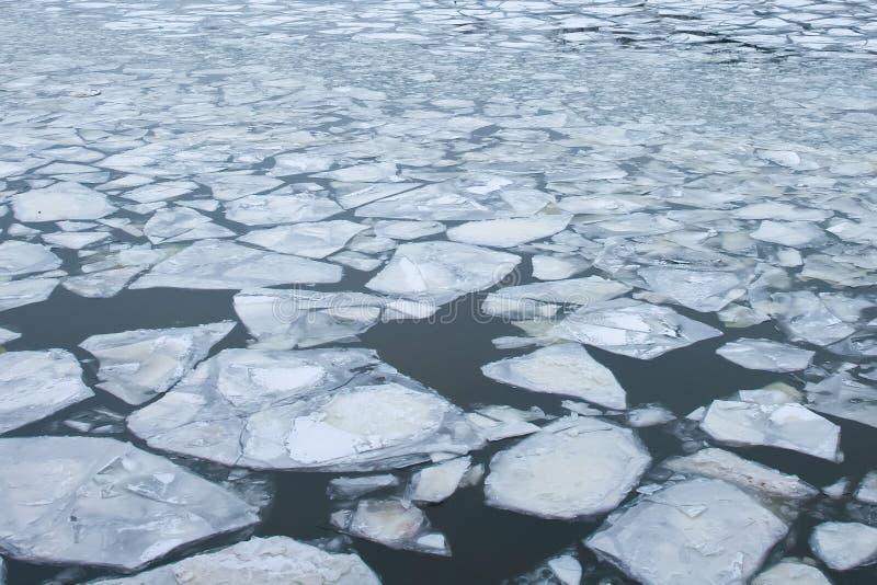 Stora stora bitar av isflötet på yttersidan av vattnet arkivbilder