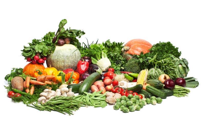 stora grönsaker för grupp fotografering för bildbyråer
