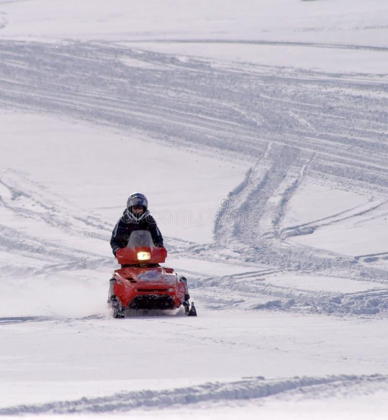 stora hornberg som snowmobiling wyoming arkivbild