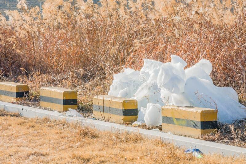 Stora kvarter av is på jordning royaltyfria foton