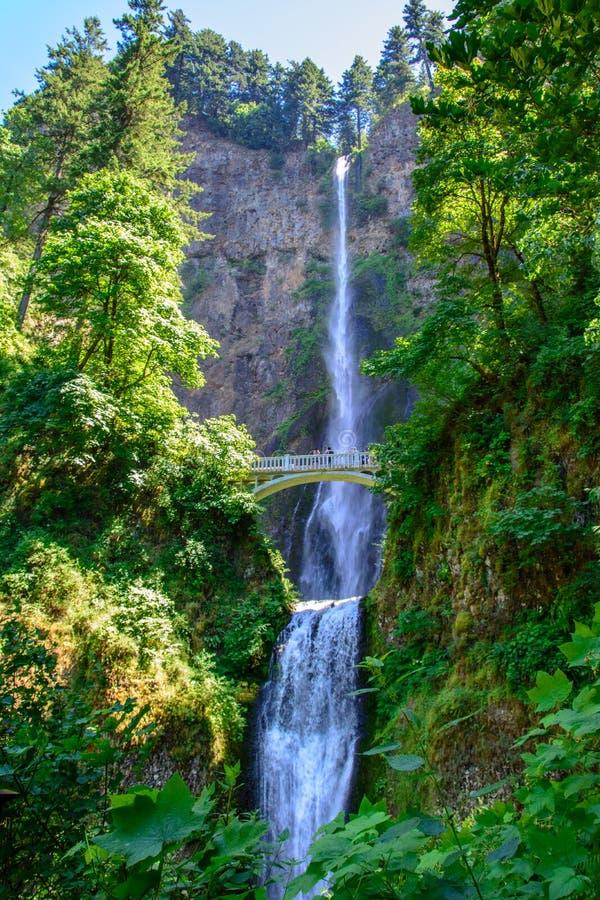 Stora Multnomah nedgångar Portland, Oregon USA arkivbild
