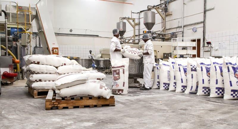 Stora påsar av mjöl som laddar in i blandare royaltyfri foto